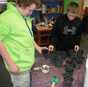 "Students with their ""rescued"" seedlings."
