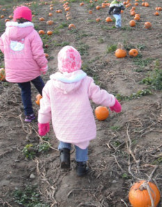 kids-amid-pumpkins-for-blog-post