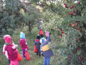 resized-kids-picking-apples
